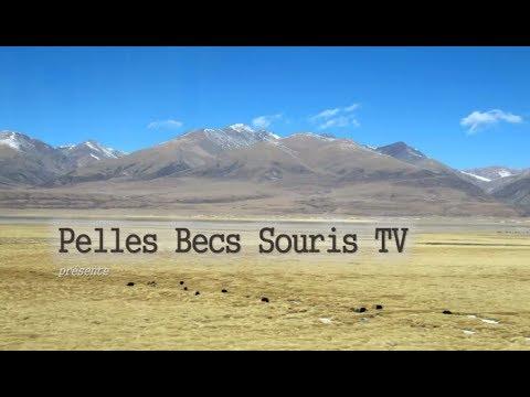 Le voyage épisode 7: Incursion au Tibet