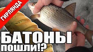 Рыбалка с гирляндой - прощай глухозимье! Плотва, окунь, синец, подлещик, густера