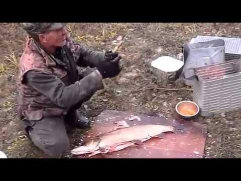 Рыболовные базы Ростовской области