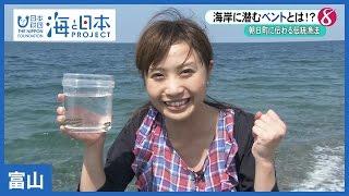 #12 海岸にひそむ魚!ベント|海と日本PROJECT in 富山 thumbnail