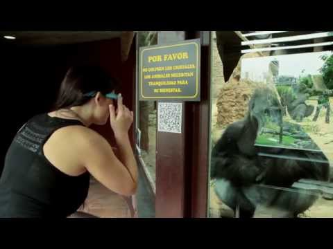 A Google Glass Experience at Zoo de Madrid