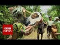 In The Jungle With Rohingya Refugees Feeling Myanmar BBC News mp3