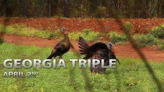Georgia Triple | Spring Thunder
