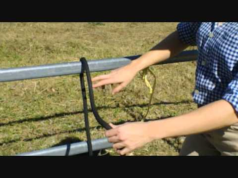 How To Tie A Quick Release Knot - Local Horse Magazine