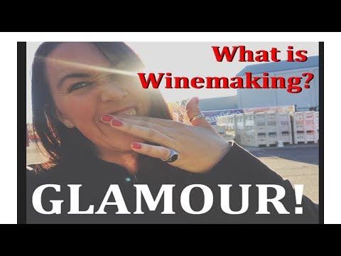 Oregon Women in Wine - Winemaker & Rock Star Sara Garr