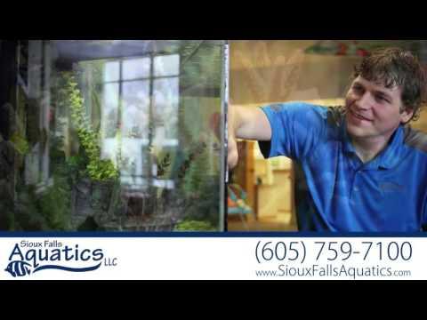 Sioux Falls Aquatics | Gifts in Sioux Falls