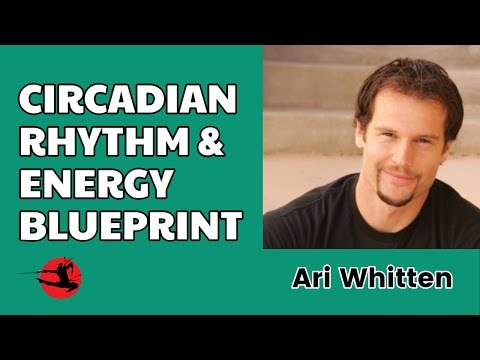 Circadian Rhythm & How It Affects Your Energy with Ari Whitten