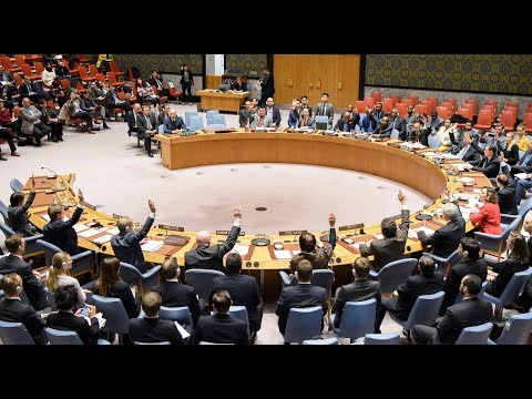 UN Security Council Unanimously Agrees for 30-day Ceasefire in Syria