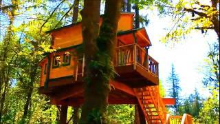 GGC Designs Tiny Home embly - clipzui.com on tiny bedroom, tiny modular homes, tiny portable homes, tiny room design ideas, tiny kit homes, tiny art, tiny fashion, tiny homes inside and outside, tiny prefab homes, tiny books, mini bungalow house plans designs, tiny plans, tiny house, loft small house designs, small box type house designs, tiny log homes, tiny compact homes, tiny interior design, tiny custom homes, tiny homes with staircases,
