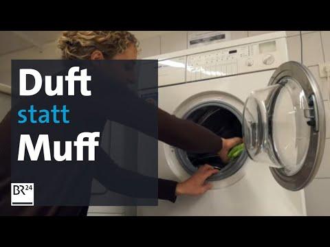 Stinkende Wäsche Aus Der Waschmaschine - Was Tun? | Abendschau | BR24
