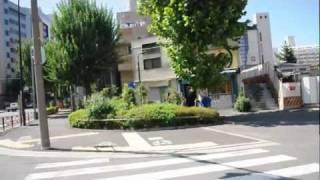 Tokyo - DIA 3 (1/2), SHINJUKU, PARQUE YOYOGI, HARAJUKU Y SHIBUYA