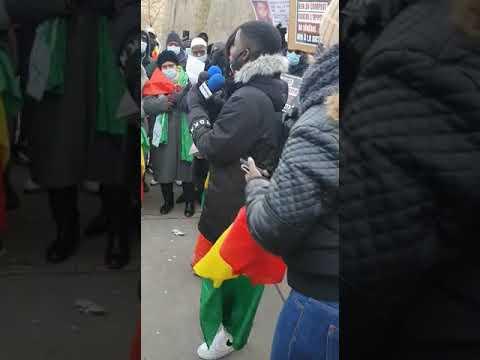 Manifestation des Pro-Sonko à Paris