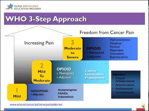 Competence in Cancer Care: End of Life Care and Survivorship