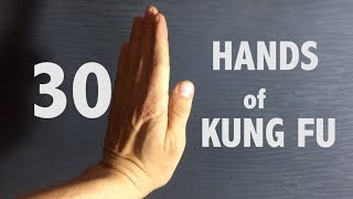 30 Hands of KungFu ( Different Fists of GongFu)