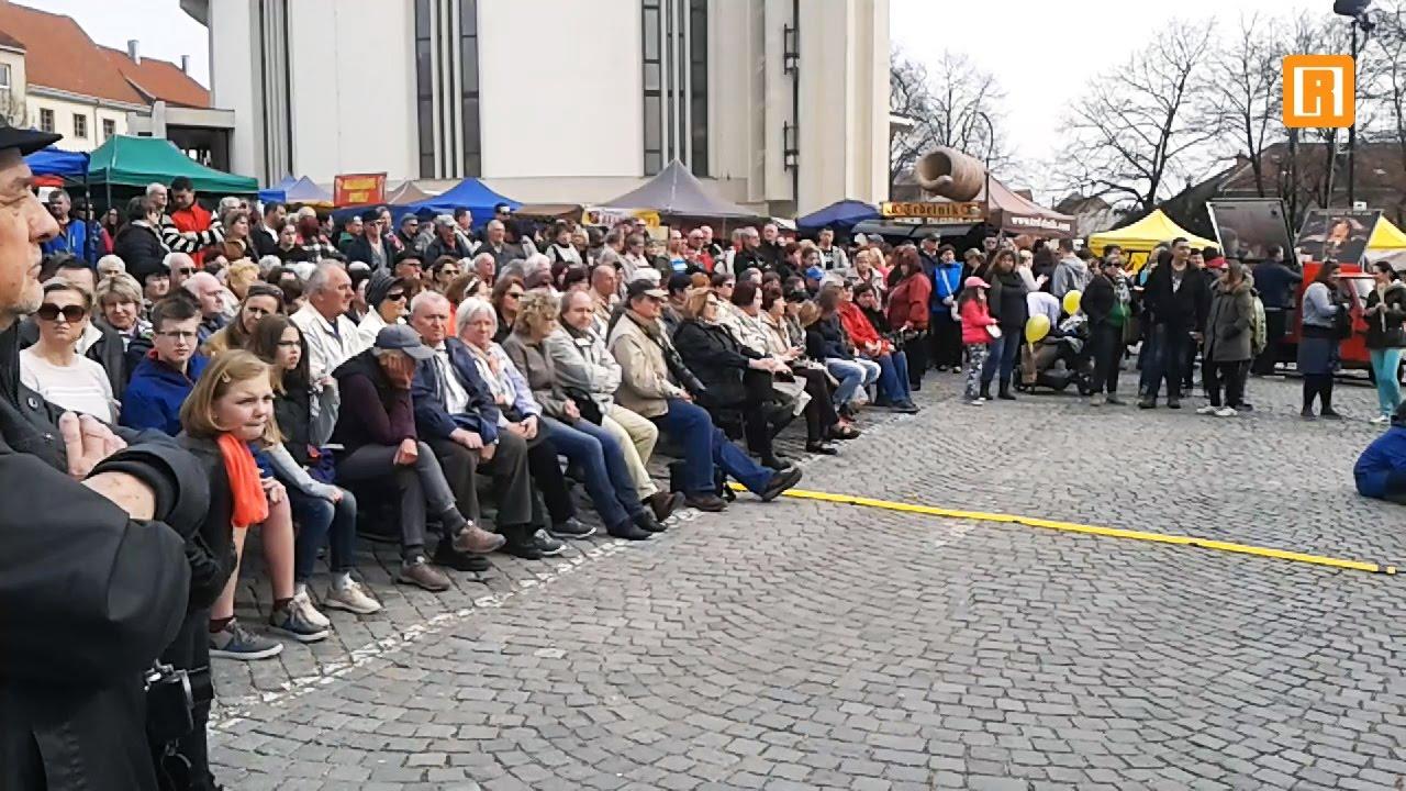Slavnosti mandloní a vína 2017; Hustopeče (Hustopečsko)