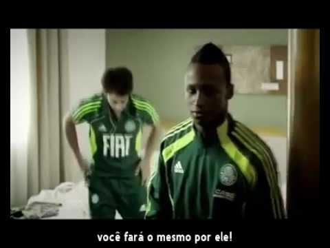 Palmeiras - Um Jogo Qualquer
