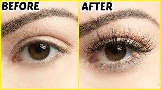 How To Grow Long Eyelashes FAST | PrettyPriyaTV