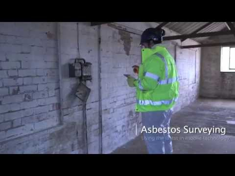 Asbestos Consultants Europe Ltd (ace)