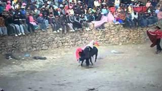 fiesta distrito de caylloma 2010 corrida de toros