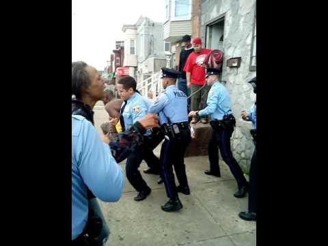 North Philly pigs