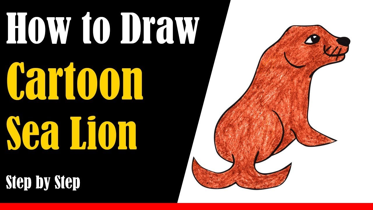 How to Draw a Cartoon Sea Lion Step by Step - very easy