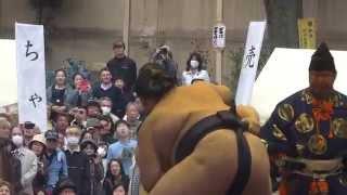 20150403 靖国神社奉納相撲 豪栄道vs照ノ富士.