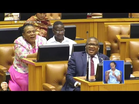Funny | Fikile Mbalula Listening to music in Parliament