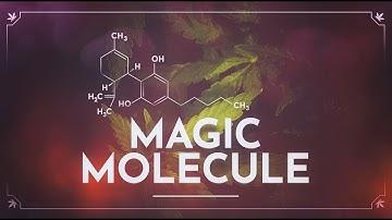 CBD: The Magic Molecule OFFICIAL TRAILER