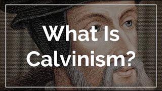 칼빈주의 교리의 이단성