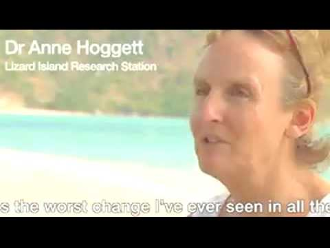 Great Barrier Reef  suffers worst bleaching    BBC News x264