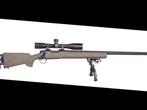 M24 Sniper Weapons System 1