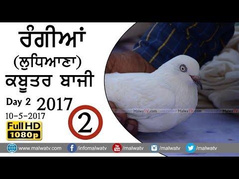 KABOOTAR BAZI ● ਕਬੂਤਰ ਬਾਜ਼ੀ ਮੁਕਾਬਲੇ - 2017 at RANGIAN ਰੰਗੀਆਂ (Ludhiana) ● Day 2nd ● Part  2nd