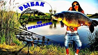 Рыбак по призванию Приколы на рыбалке 2020 Смешные случаи на рыбалке Пьяные рыбаки