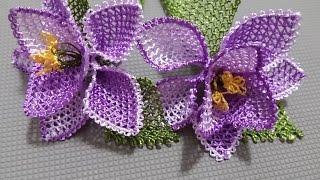 Violetas roxas com rendas em camadas