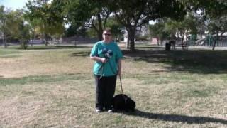 Southern Nevada K9 Training Testimonial.