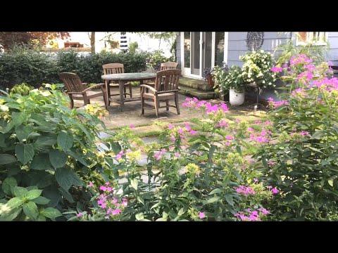 🌳 Small Urban Garden Tour ~ Outdoor Room Transformation ~ Green Oasis Patio 🌳