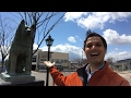 The Other Hachiko? video