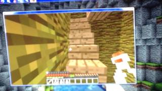 Mine Craft - How to make leap,night vision, and invisibility potions.