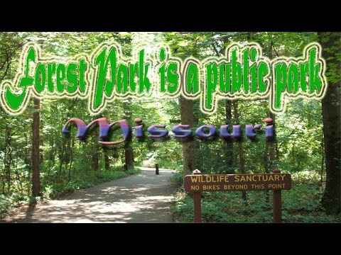 Missouri Forest Park public park Destination & Attractions | Visit Forest Park  public park