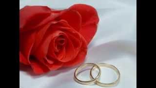 Организация и проведение свадеб Казань