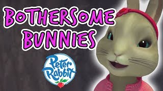 Peter Rabbit - The Bothersome Bunnies | On the Hunt for Blackberries