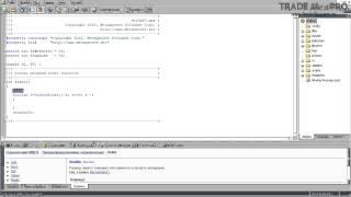 Разработка и написание форекс скриптов на MQL4