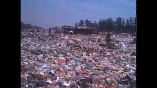 Recycling big business down in Zimbabwe's dumps
