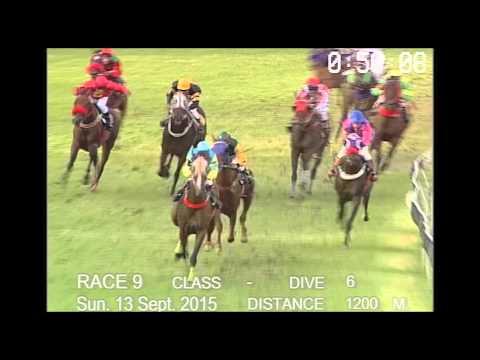 ม้าแข่งสนามฝรั่ง 13 กันยายน 2558 ชั้น 6