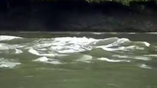 Japanese Tsunami Hits British Columbia, Canada