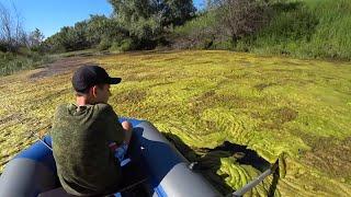 Рыбалка на Спиннинг в июне 2020 Ловля щуки летом