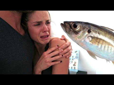 vegans-eat-fish-caught-on-camera!