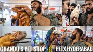 CHANDU EXOTIC PETS SHOP- PETEX HYDERABAD 2019 - INDIA'S BIGGEST EXOTIC PET'S SHOW/ EXHIBITION.
