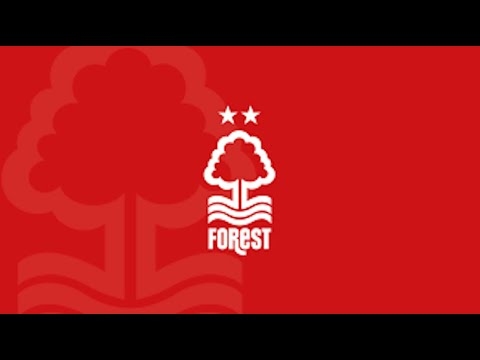 Nottingham Forest - Episode 13 - January Transfers - Football Manager 2021  