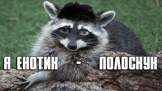 Глад Валакас - Я Енотик - Полоскун